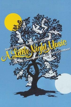 Egy kis éji zene