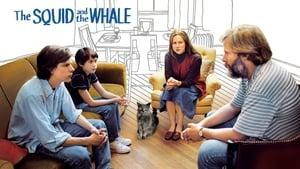 A tintahal és a bálna háttérkép