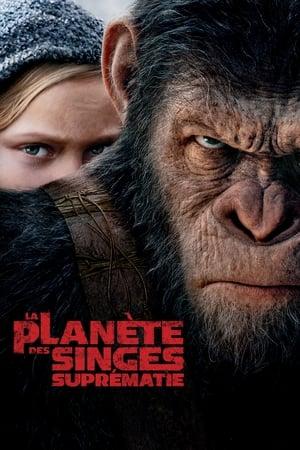 A majmok bolygója: Háború poszter