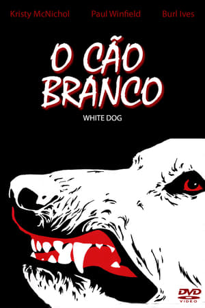 Fehér kutya poszter