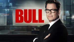 Bull kép