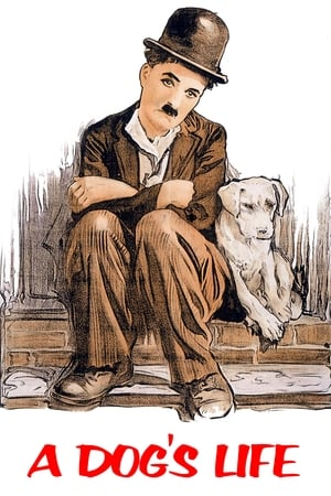 Kutyaélet