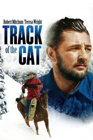Track of the Cat poszter