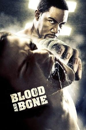 Vér és csont