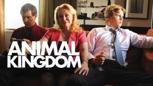 Animal Kingdom háttérkép
