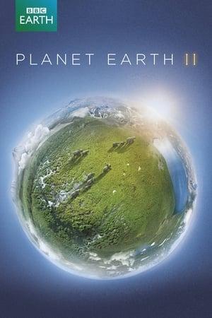 Bolygónk, a Föld 2