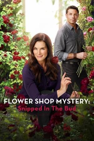 Virágbolti rejtélyek: A Fekete rózsa esete