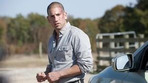 The Walking Dead 2 évad Ep.12 Jobbik természetünk