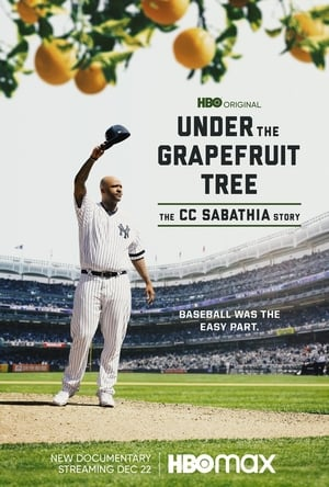 A grapefruit fa alatt: A CC Sabathia sztori
