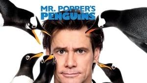 Mr. Popper pingvinjei háttérkép