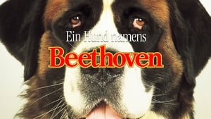 Beethoven háttérkép