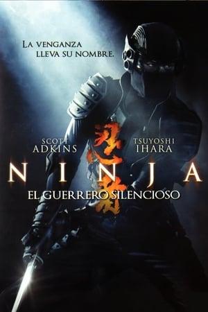 Nindzsa poszter