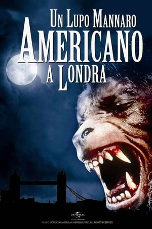 Egy amerikai farkasember Londonban poszter