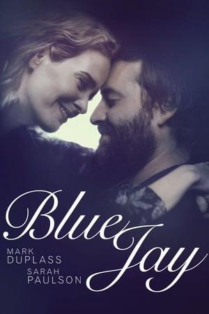 Kék Szajkó
