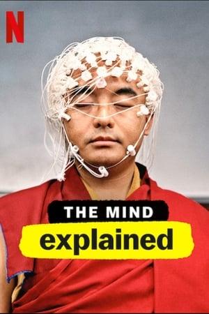 Van rá magyarázat: Az agy