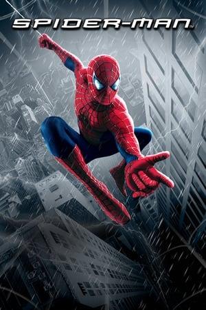 Pókember poszter