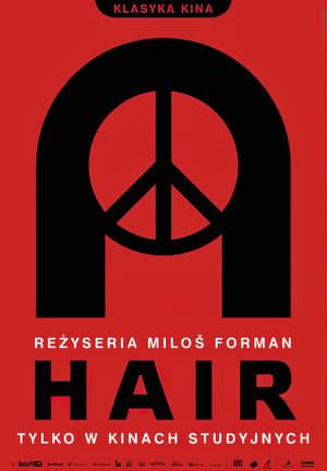 Hair poszter