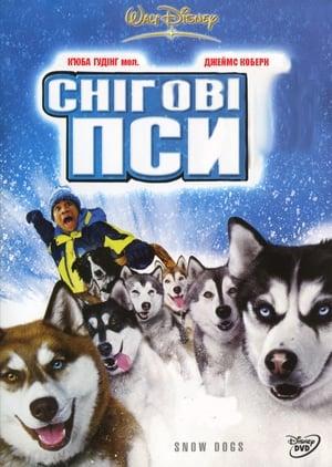 Kutyabajnok poszter