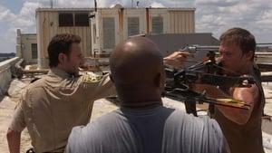 The Walking Dead 1 évad Ep.4 A látnok