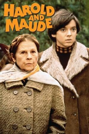 Harold és Maude