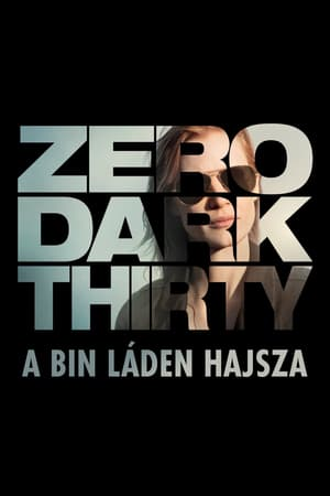Zero Dark Thirty - A Bin Láden hajsza