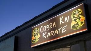 Cobra Kai kép