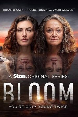 Bloom poszter