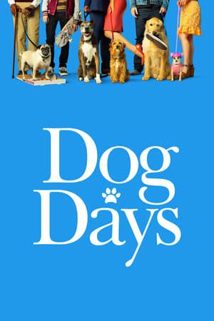 Kutya egy nyár poszter
