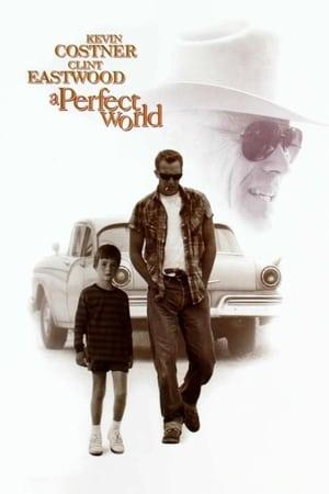 Tökéletes világ