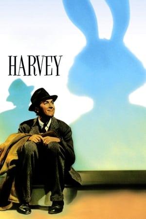 Barátom, Harvey