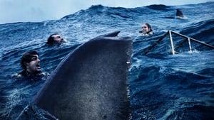 Nyílt tengeren: Cápák között háttérkép