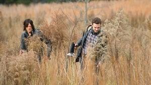 The Walking Dead 5 évad Ep.16 Hódítás