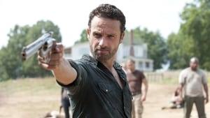 The Walking Dead 2 évad Ep.7 Fél lábbal a sírban