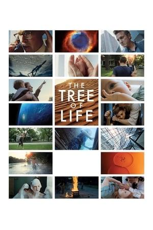 Az élet fája poszter