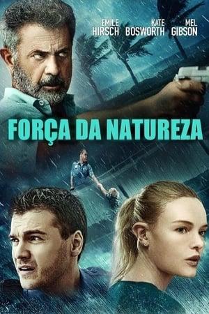 A vihar markában poszter
