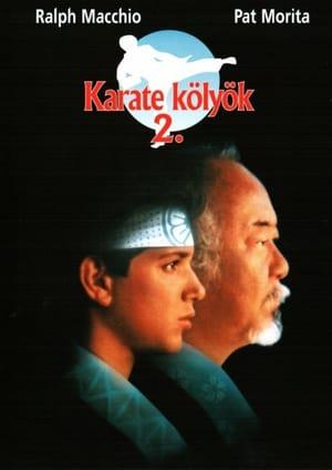 Karate kölyök 2.