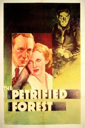 A megkövült erdő poszter