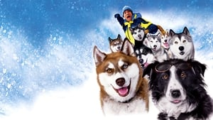 Kutyabajnok háttérkép