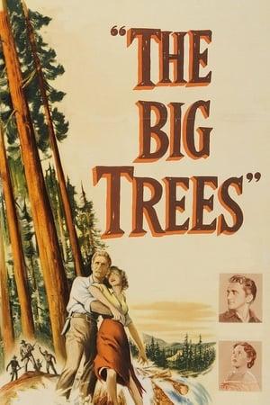 The Big Trees