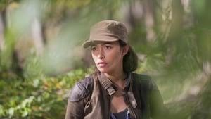 The Walking Dead 6. évad Ep.15 Kelet