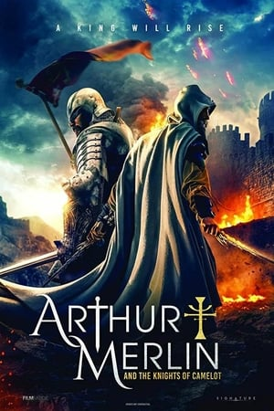 Arthur & Merlin: Knights of Camelot poszter