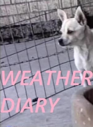 Weather Diary 3
