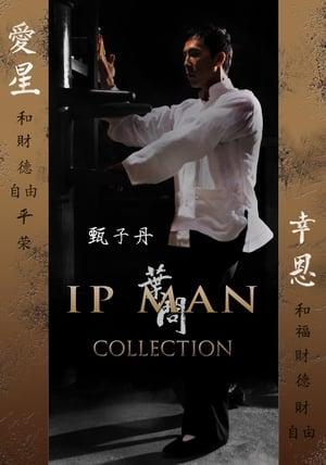 Ip Man filmek