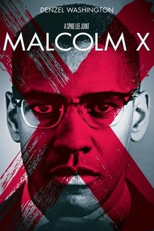 Malcolm X poszter
