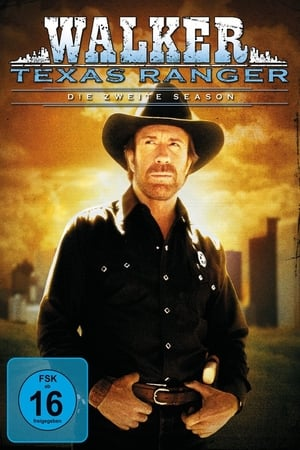 Walker, a texasi kopó poszter
