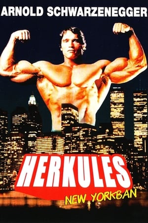 Herkules New Yorkban