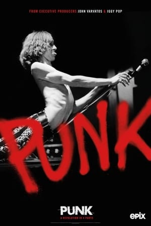 Punk poszter