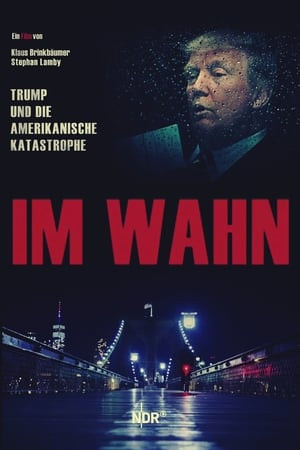 Im Wahn - Trump und die Amerikanische Katastrophe
