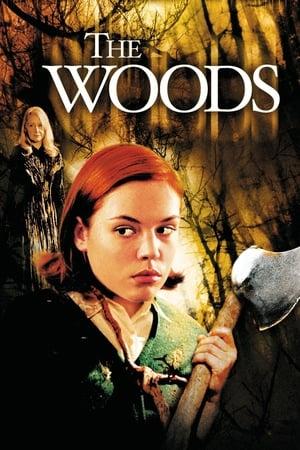 Az erdő poszter