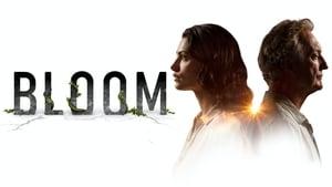Bloom kép